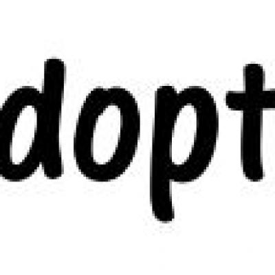 Chats adoptés en 2018